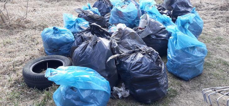 Udało się posprzątać wybrzeże Wisłoka na osiedlu Pobitno